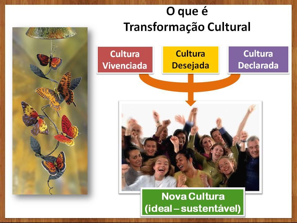Tipo-de-cultura-organizacional-Evolução-Humana.jpg