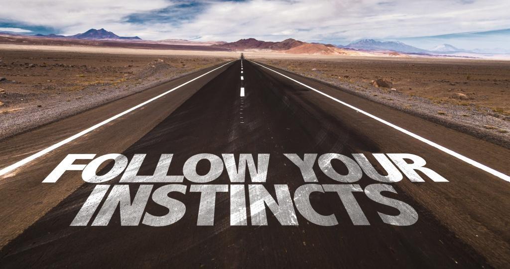 Mundo novo e autoconhecimento: os líderes instintivos (artigo 2)